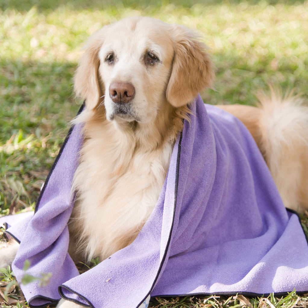 Purple-Black Mugzy's Mutt Towel