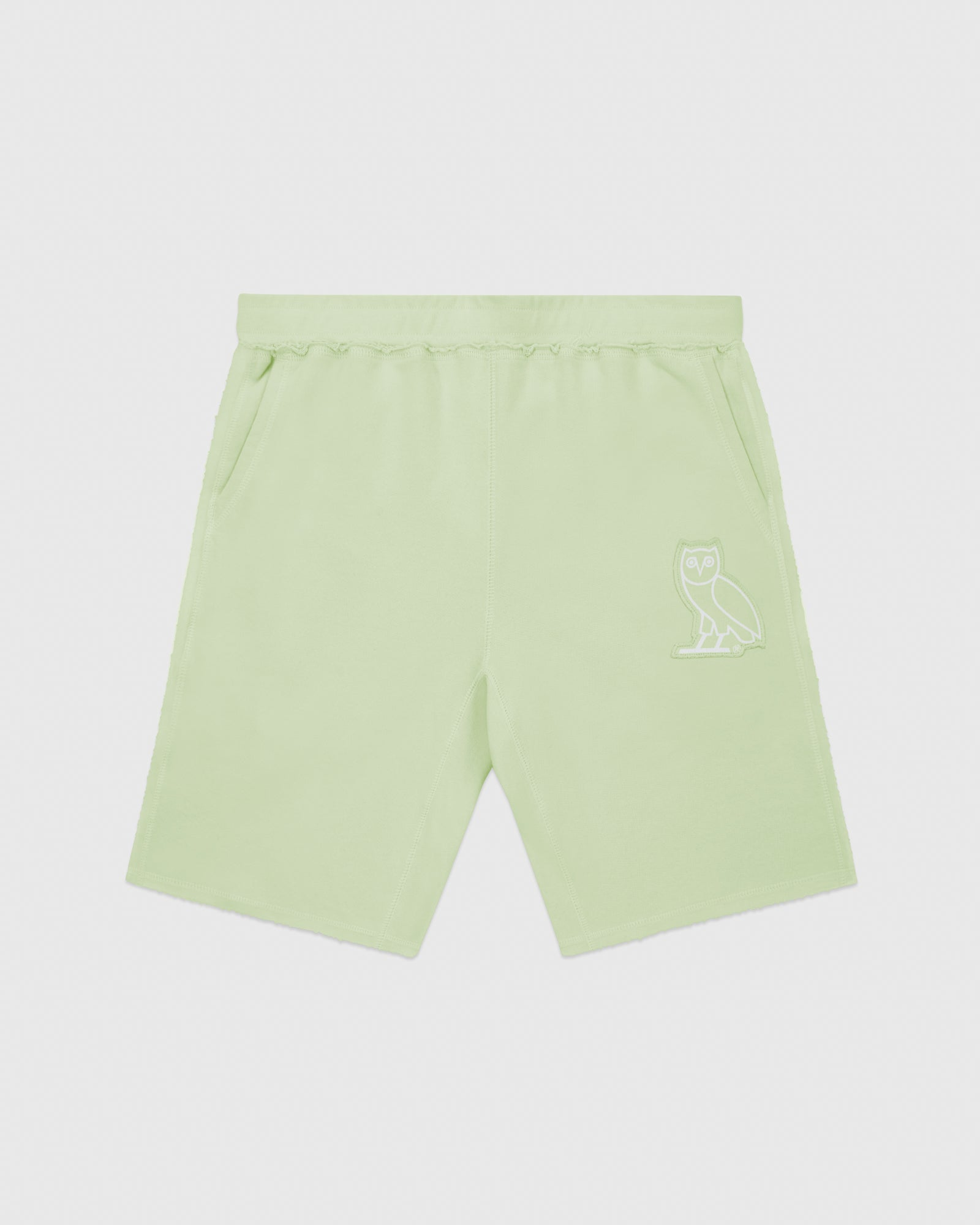 RAW EDGE FRENCH TERRY SWEATSHORT - MINT IMAGE #1
