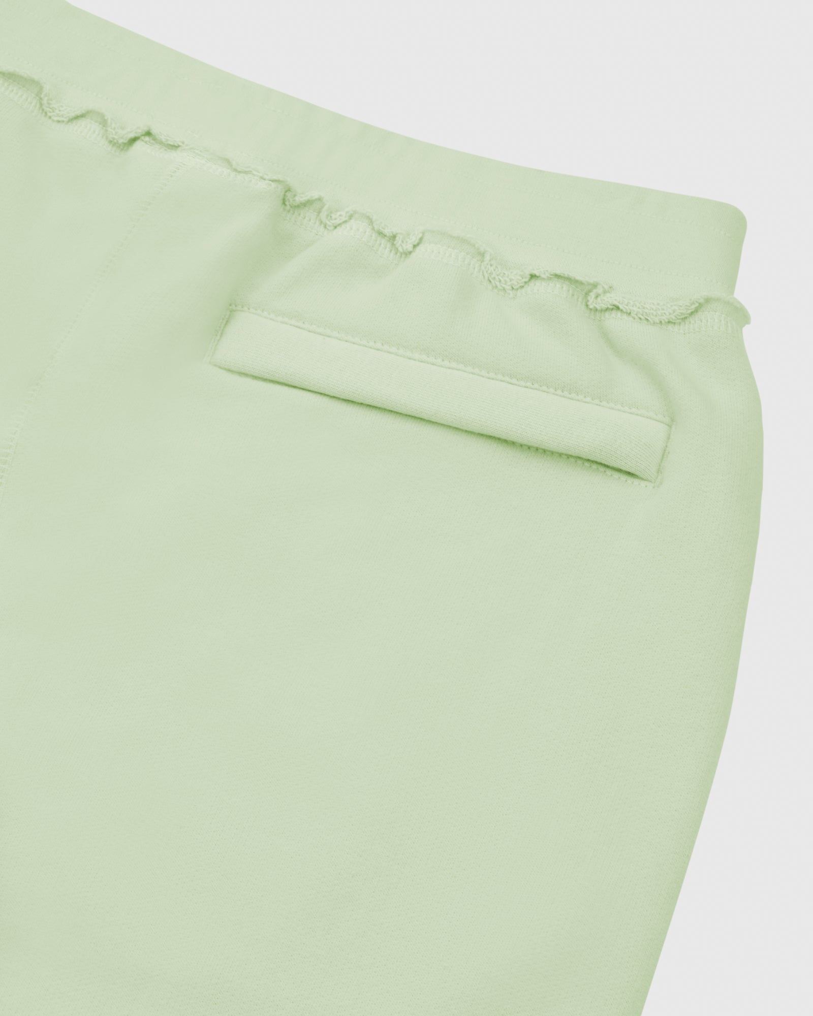 RAW EDGE FRENCH TERRY SWEATSHORT - MINT IMAGE #4