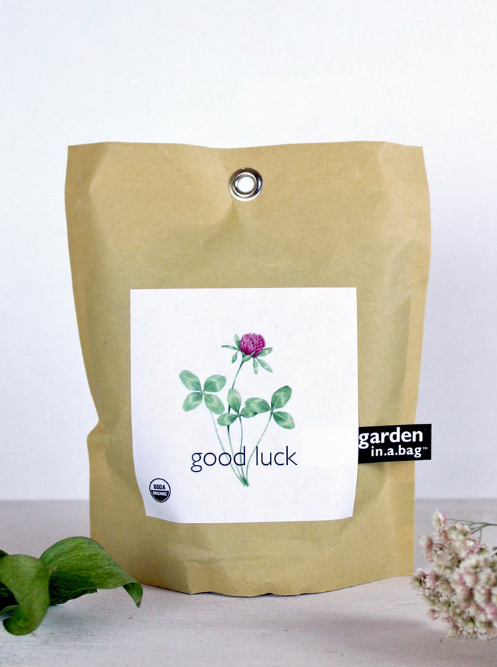 Garden In a Bag - Good Luck Clover