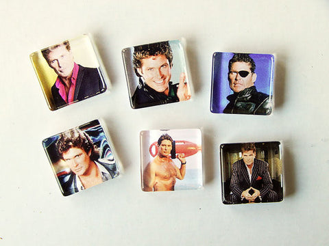 Don't Hassel the Hoff Magnet Set