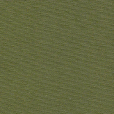 53 Cotton Duck Boxwood Green 34 Swatch