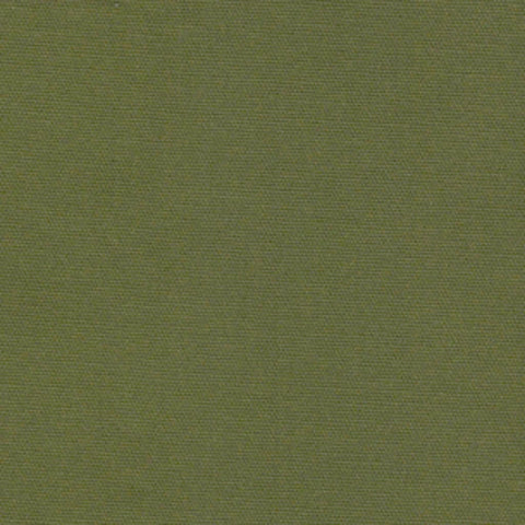53 Cotton Duck Boxwood Green 33/34 Swatch