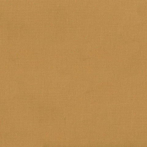 52 Cotton Duck Tan 23 Swatch