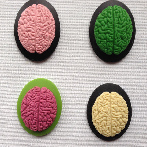 Anatomy Brain Cameo - 40x30mm -  (TU Original Design)