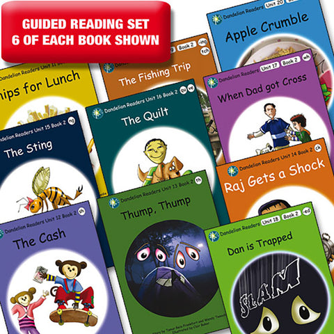 Guided reading set - Dandelion Readers units 11-20 series 2 x 6 of each book