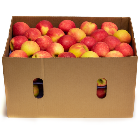 APPLES PINK LADY ORGANIC 100 CT