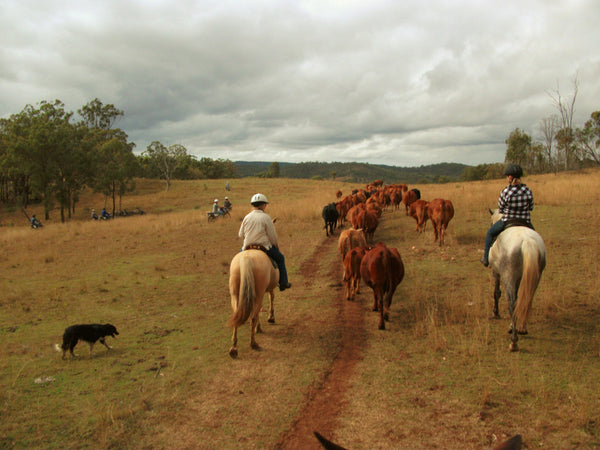 Ranch Work Australia