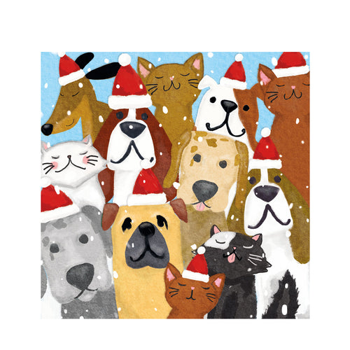 B - 'Christmas Pet Parade' Christmas cards pack of 10