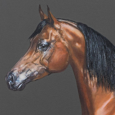 Anja Wülfing Oil on Canvas Arabian Horse wydr - digital art gallery