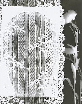 Jeremy Blair Darkroom Photogram Draped in the Lace of You wydr - digital art gallery