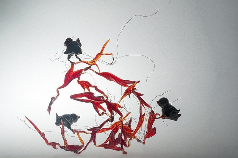 Lucía Rodríguez Mota Flameworked glass Crows (inspired by Death and the Maiden String Quartet) wydr - digital art gallery