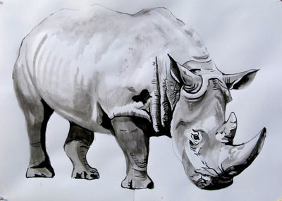 soso kumsiashvili acrylic on paper Rhinoceros wydr - digital art gallery