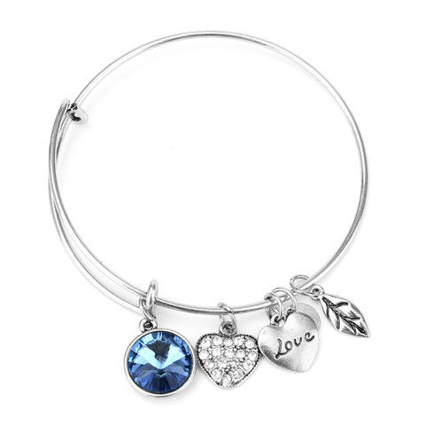 December Birthstone Charm Bangle - Ashley Jewels - 2
