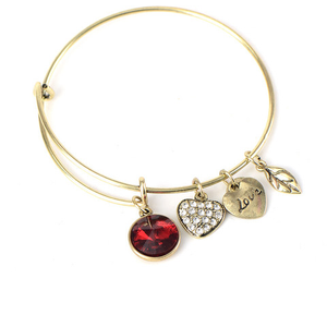 January Birthstone Charm Bangle - Ashley Jewels - 1