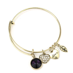 February Birthstone Charm Bangle - Ashley Jewels - 2