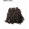 Unique's Kanekalon Sassy Curl - Hair and Accessories Inc