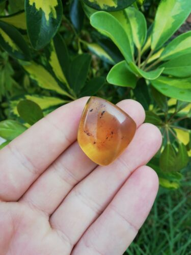 Full Polished Mexican Amber 6.7g blue green gem