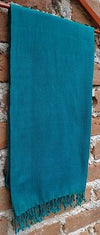 Green Rebozo Shawl from Mexico Handwoven Cotton