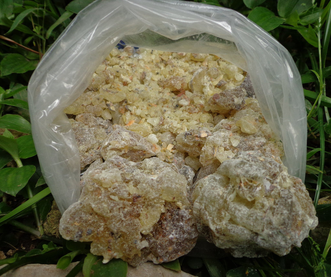 Mayan Fine Copal Resin Clean With No Bark