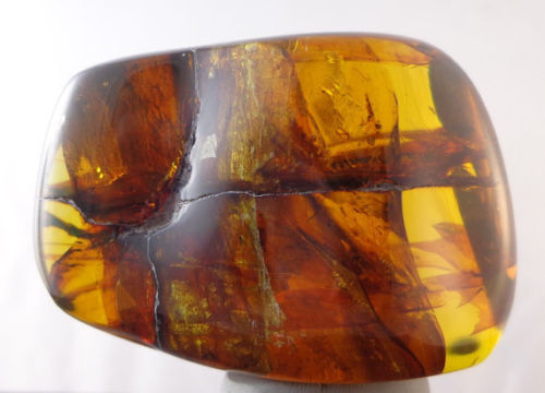 Blue Green Mexican Amber Full Polished from Chiapas 34.6g