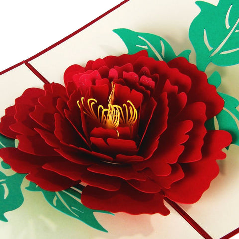 3D Pop Up Greeting Card - Peony - INPCreative - 1