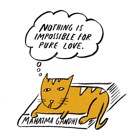 Philosopher Cat: Mahatma Gandhi