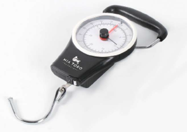 Analog Hanging Luggage Scale