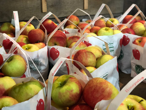 bags of honey crisp apples in bin at apple orchard