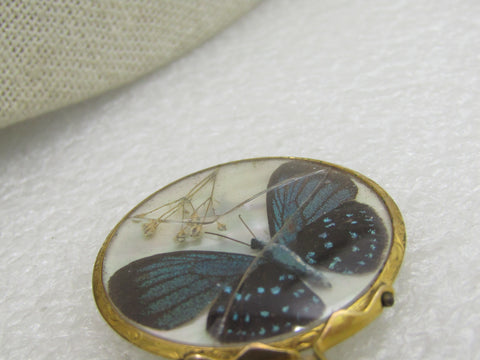 Victorian 12kt Two-Side MOP Watch Fob, Butterfly/Moth and Bird, 1.5""