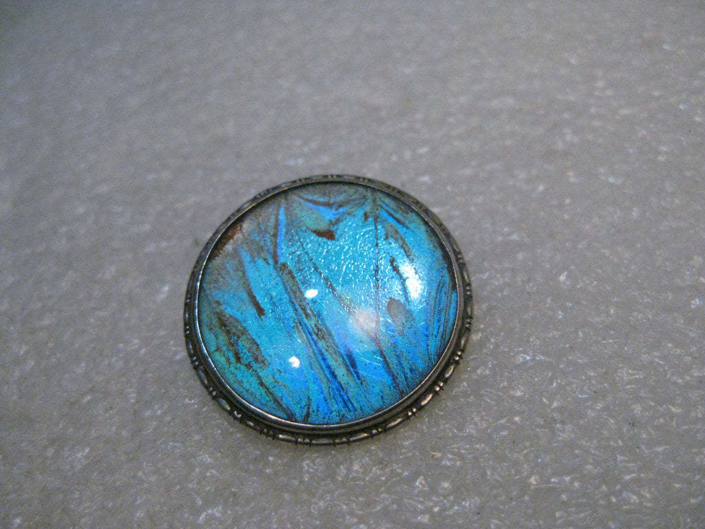 "Sterling Morpho Butterfly Wing Brooch, Vintage, England, C-Clasp, Estate, 1"" Round, Domed"