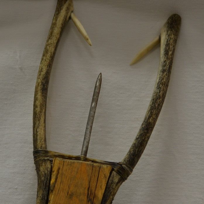 Inuit fish spear - trident close up