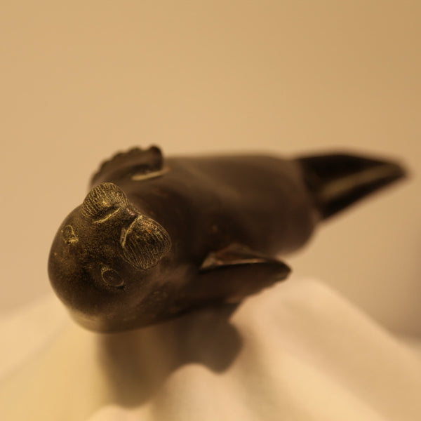 Basking spotted seal inuit carving