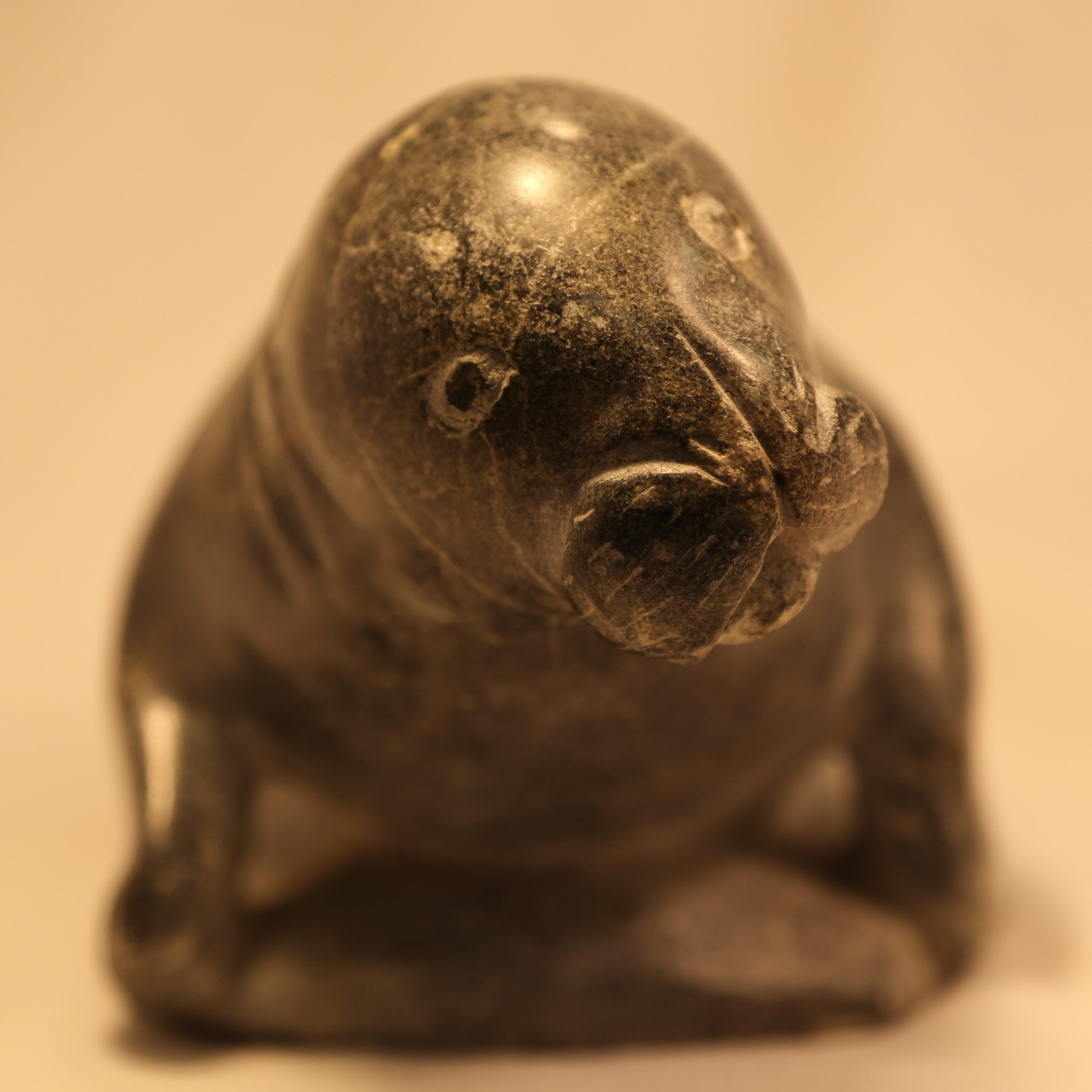 Fat Sea Lion Inuit Carving Face