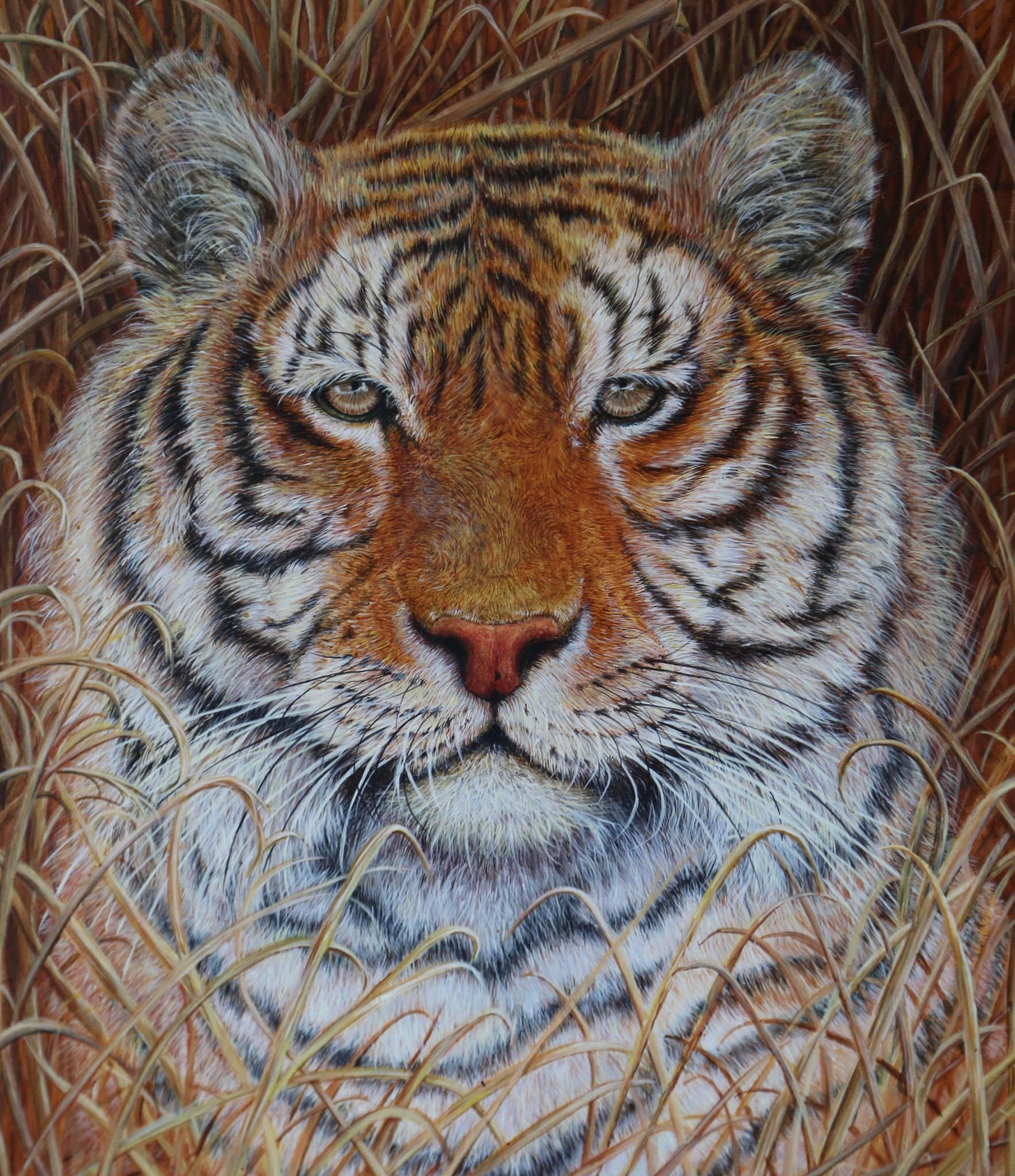 Tiger painting by Stephen Hewer close up