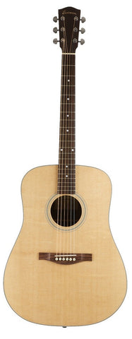 GTR Dreadnaught AC220  Eastman