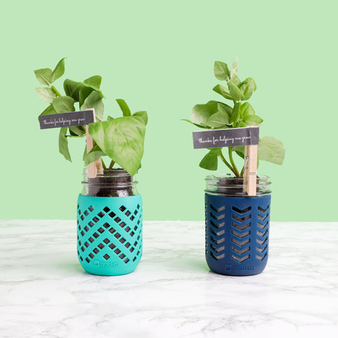 """Two 16oz mason jars fitted with JarJackets silicone sleeves sit on a counter with basil plants planted inside them. Two clothespin tags read """"Thanks for Helping Me Grow""""."""