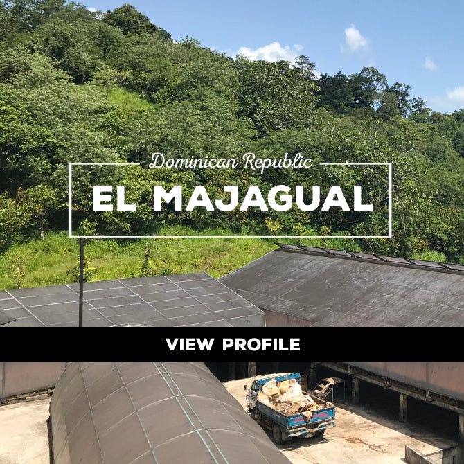 Taza Chocolate Sourcing Partner: El Majagual Partner Profile, Dominican Republic