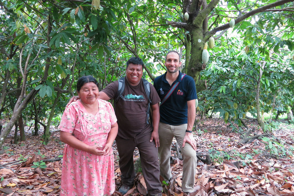 Taza Chocolate Direct Trade Maya Mountain Cacao Partner Profile