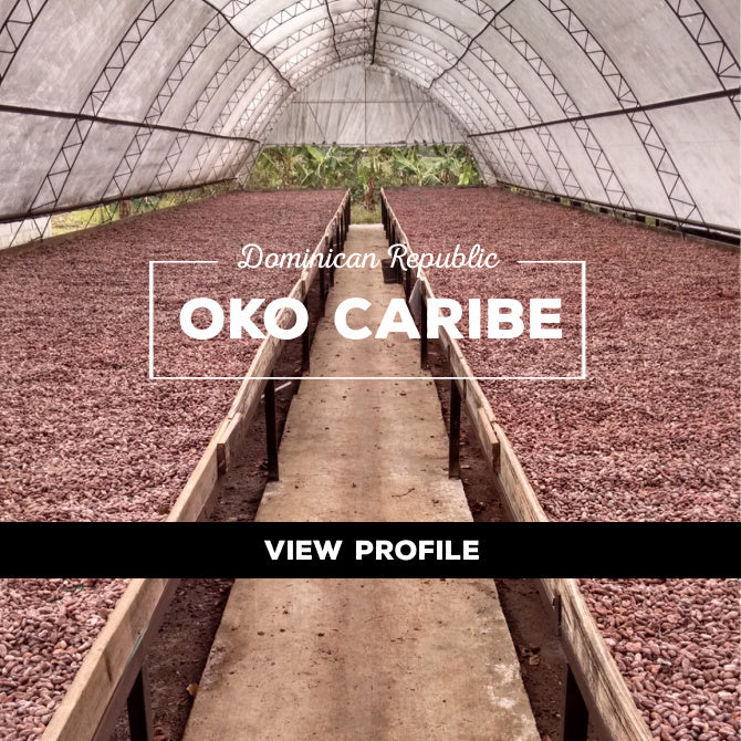 Taza Chocolate Sourcing Partner: OKO Caribe Partner Profile, Dominican Republic