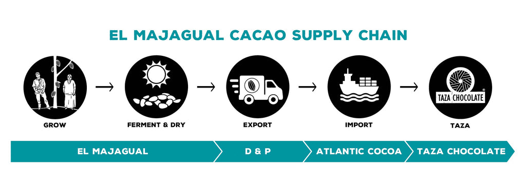 El Majagual cacao supply chain