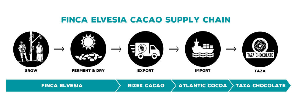 Finca Elvesia Supply Chain