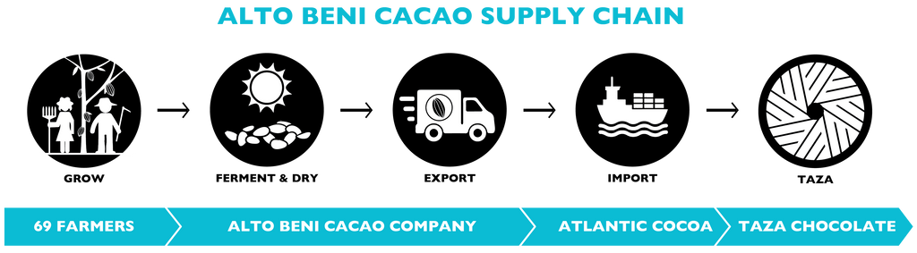 Taza Chocolate Alto Beni Cacao Company | Cacao Supply Chain