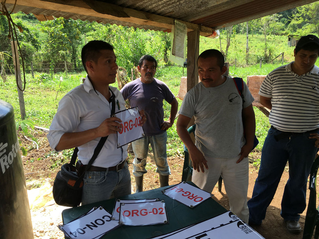 Marlon Ac, the Managing Director of Cacao Verapaz, explains to farmers how to ensure that organic cacao beans are kept apart from conventionally grown ones.