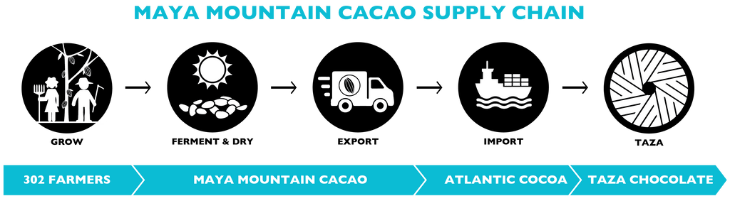 Maya Mountain Cacao Company | Taza Chocolate Supply Chain