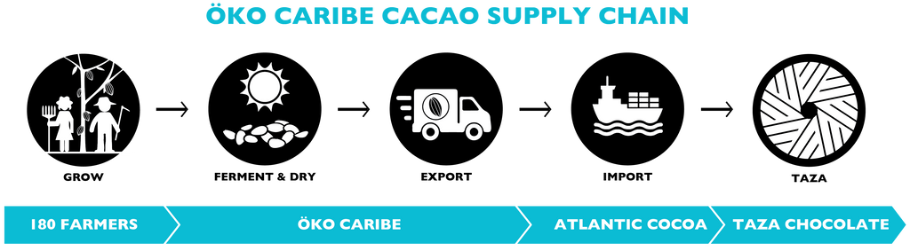 Taza Chocolate Cacao Supply Chain | ÖKO Caribe