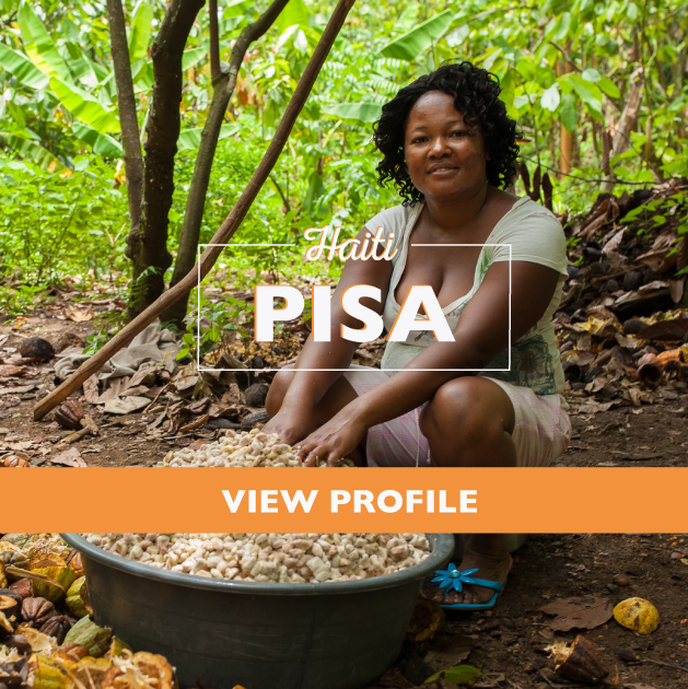 Taza Chocolate Sourcing Partner: PISA Partner Profile, Haiti