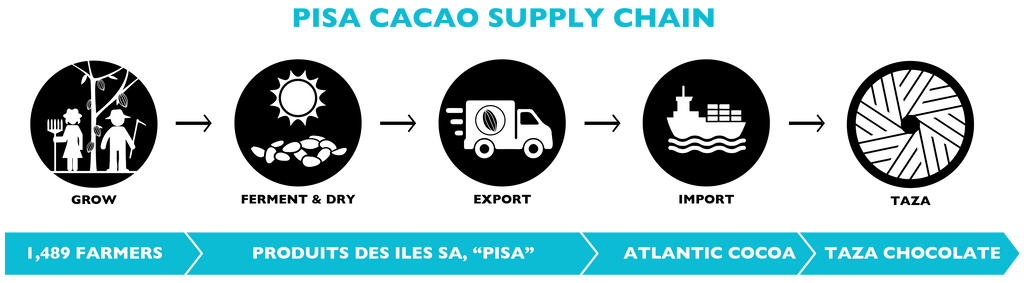 PISA | Taza Chocolate Supply Chain