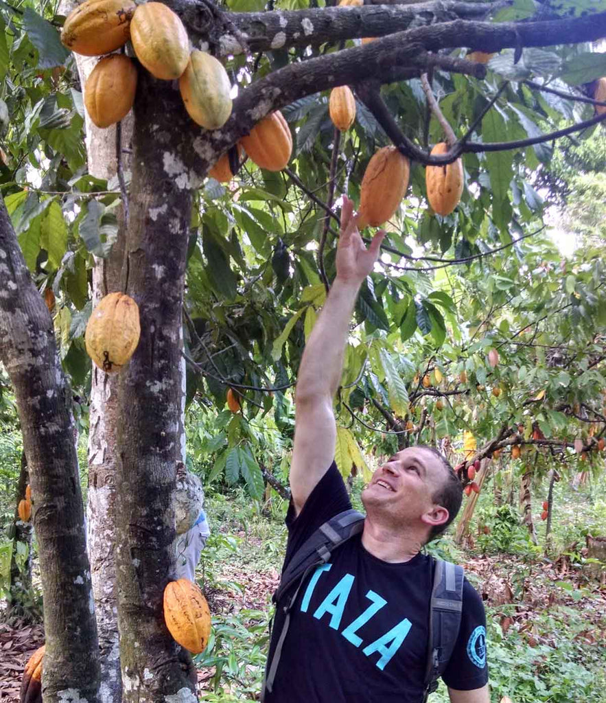 Taza Chocolate's sourcing manager, Jesse Last, reaches for a cacao pod.