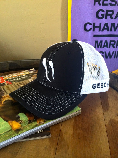 Richardson Black Snap Back With White Mesh Hat